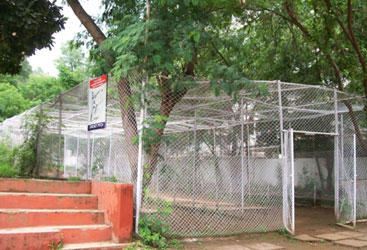 Centre Point Schools, Nagpur cricket nets